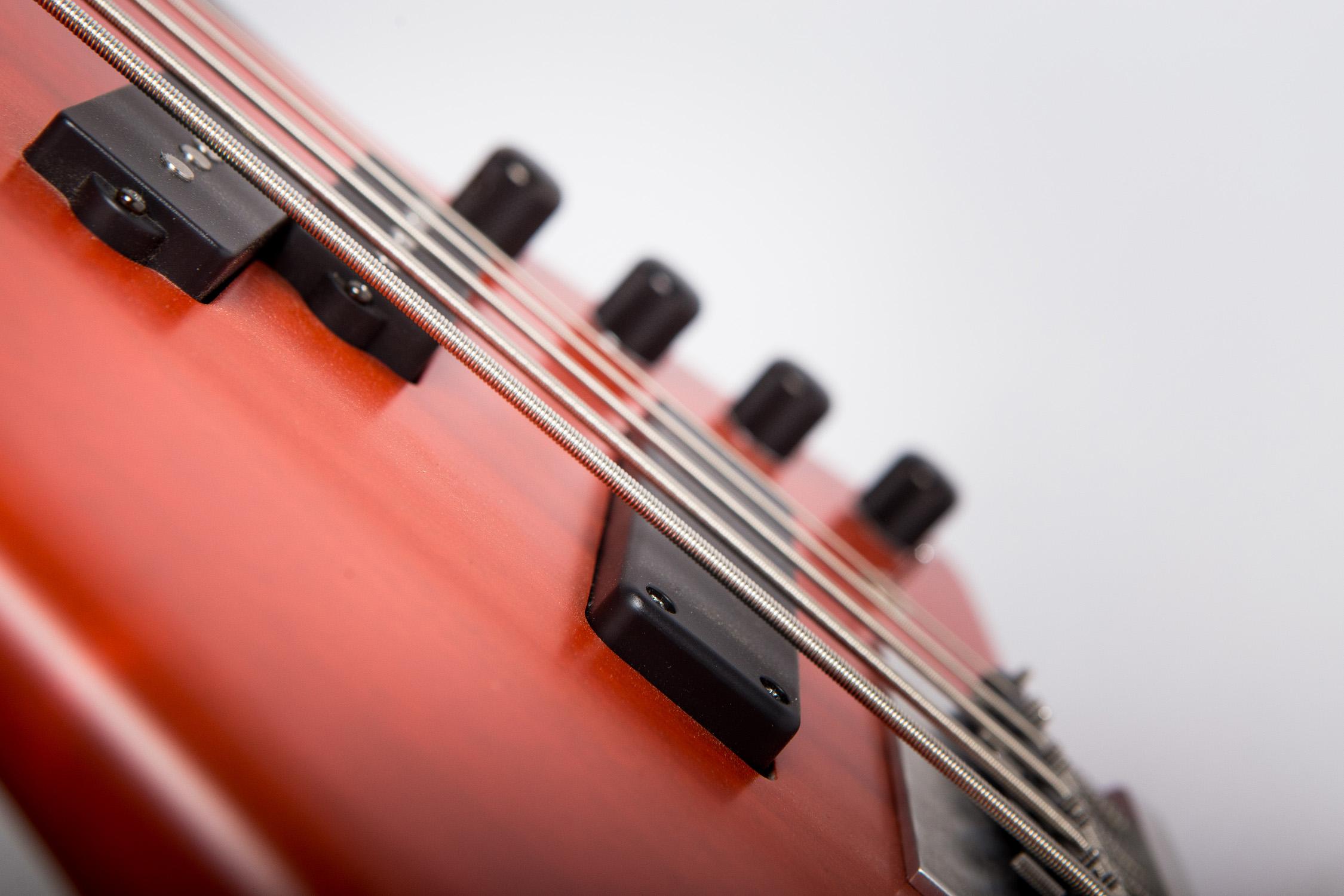 Basso Ermanno dei NegramaroCapurso Guitarfoto © Giuseppe Di Viesto